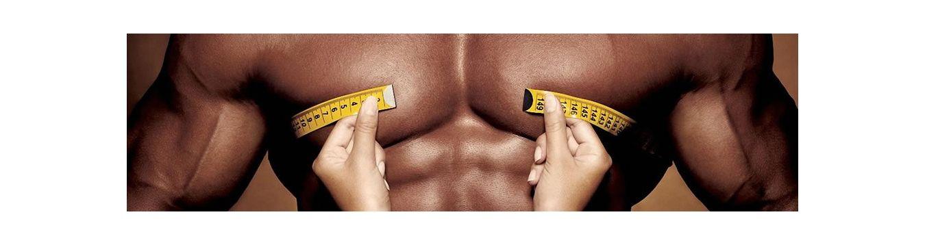 Proteínas & Aminoácidos