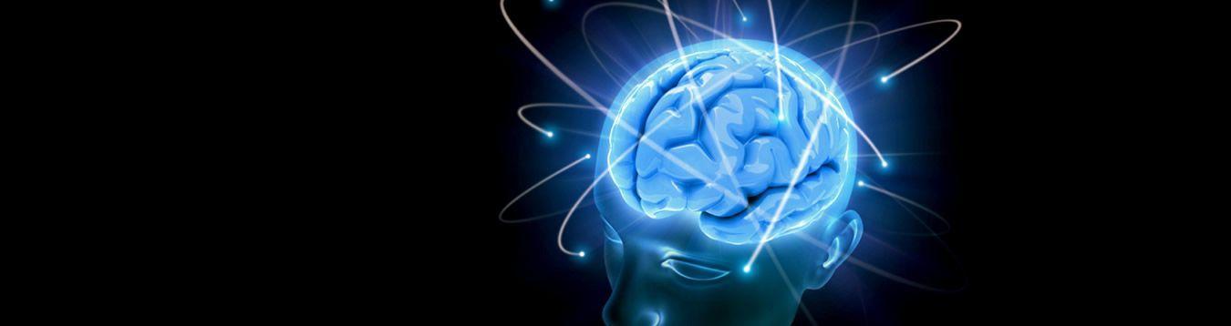 Cerebro & Memoria